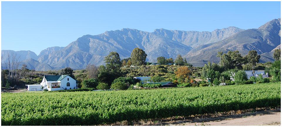 breede-valley-vinregionen-landskap