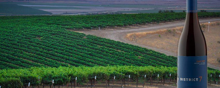 vy över vingårdar i monterey, kalifornen som tillhör scheidfamily wines och även bild på district 7 pinot noir.