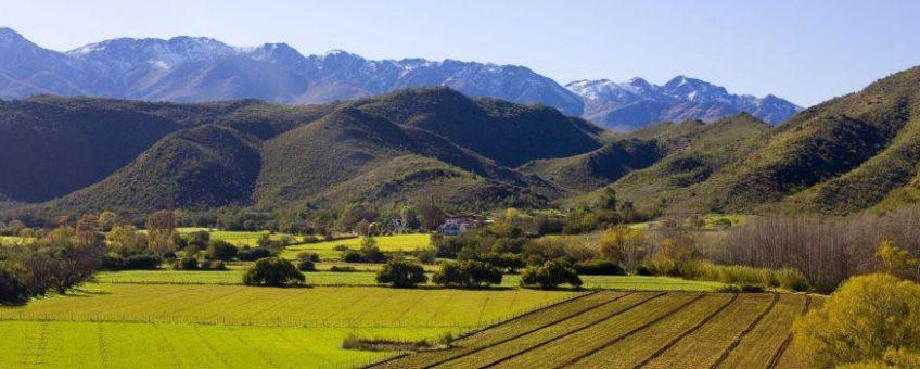 klein-karoo-vinregionen-landskap