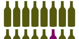 Upptäck ekologiska vinodlingar och de rena vinerna