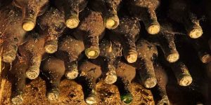 old bottles with wine are in collection of vintage wines