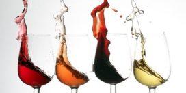 Är du nybörjare på vin?