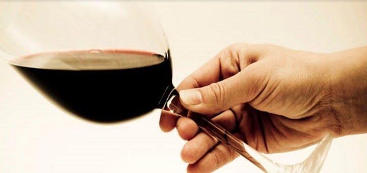 vetenskap om vin