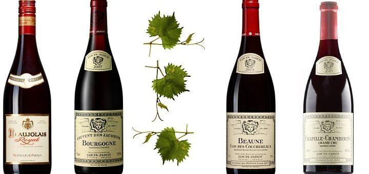 Bourgognevin
