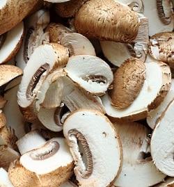 recipe: svampar i gräsmattan bilder [30]