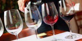 Vinprovning i hemmet: Ladda ner en komplett guide