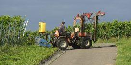 Bordeaux skär ner på bekämpningsmedel