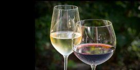 Södra Rhône – trendigaste vinregionen idag med vintips!