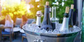 Alkoholfritt – de bästa vinerna idag!