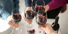 Vinprovning – nu är det dags!