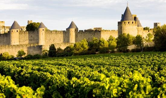 GW:S ROSA vingårdar i Languedoc Roussillon