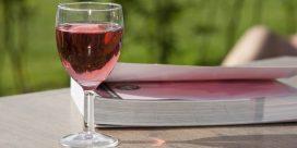 Sommarens boktips om vin och mat