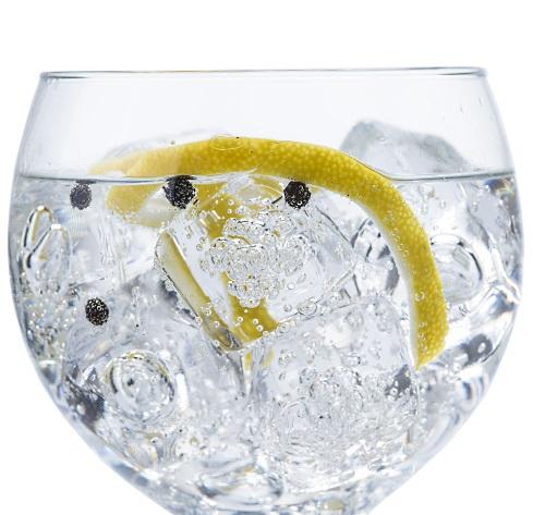 Gin: ett glas gin och tonic