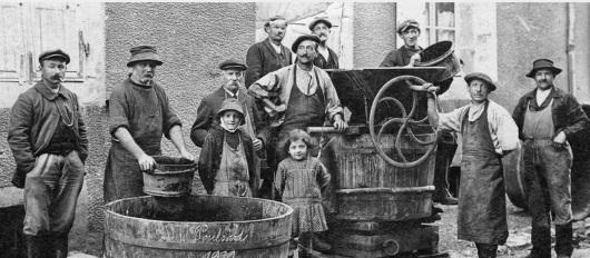 Jura: gammal bild på vinodlare