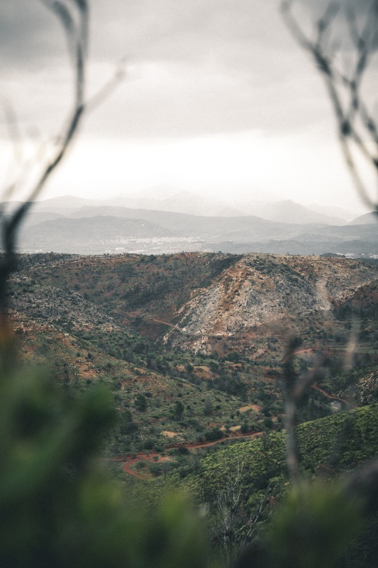 Medelhavet: vinodlingar högt upp på bergssluttningar