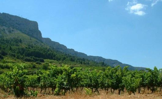 Roussillon: Domaine Vents du Sud