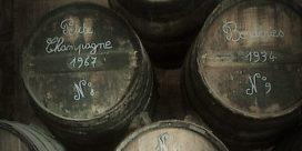 Konjak görs i regionen Cognac