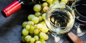 Österrike - vit och rött vin i glas samt druvor