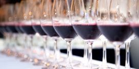 Super Toscanare  – vi berättar om vinerna och provar!