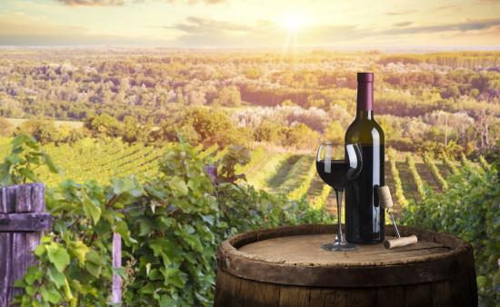 Ungern - en flaska rött vin