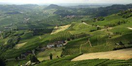 Piedmont – En av de bästa vinregionerna – din guide till vingårdarna