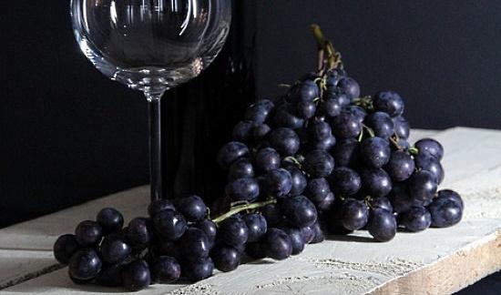 tanniner - röda druvor