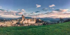 Vinregionerna Central Marche och Lazio – Din insider guide till två av Italiens bästa vinregionerna och dess vingårdar