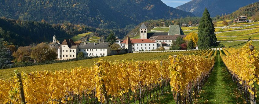 alto adige vinregion i norra italien