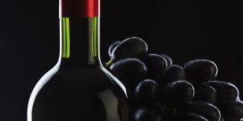 Vindruvor som är ovanliga – liten guide!