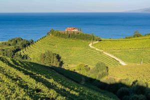 Basque country_Txakoli