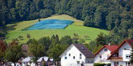 Baden – Vinregionen nära Svartskogen – Din insider guide till de bästa vingårdarna