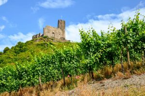 mosel_landshut_castle