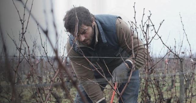 vinfilmer - Bourgogne