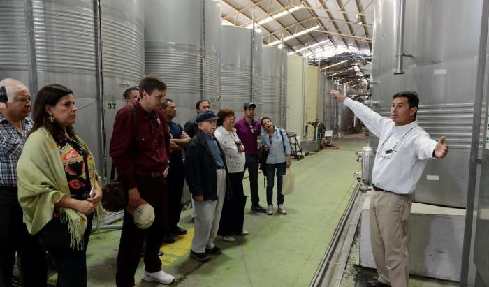 Nya världens viiner - guidad tur hos producenten Santa Rita