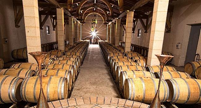 Cabernet Sauvignon - vinkällare