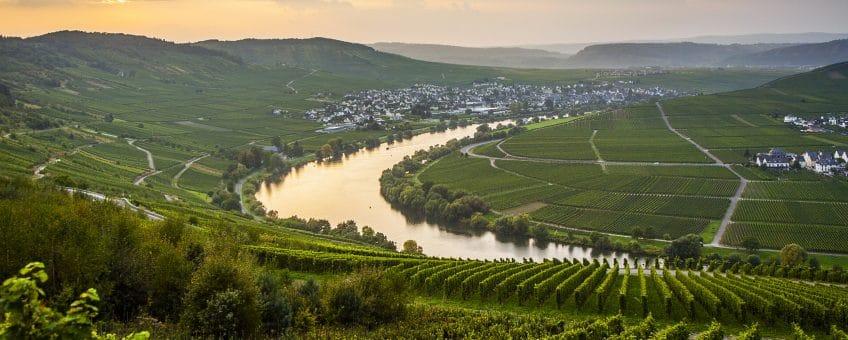 Mosel - vy över Moseldalen och vingårdarna