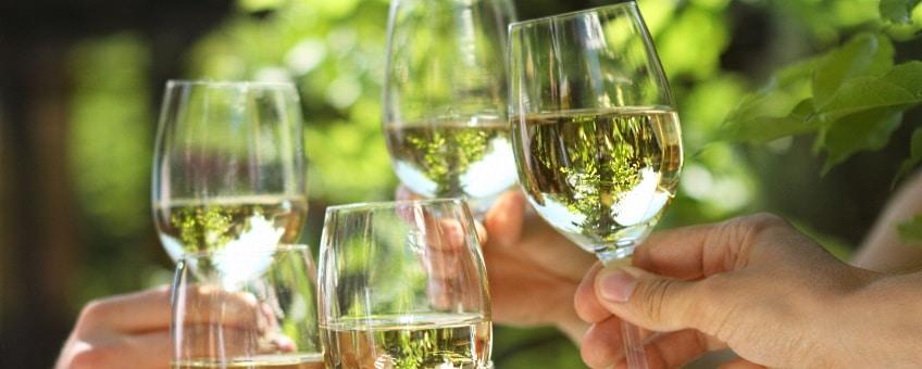 vita vin glas