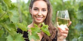 Vi svarar på 5 snabba & vanliga vinfrågor!
