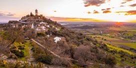 Portugals största vinregion Alentejo erbjuder fantastiska viner