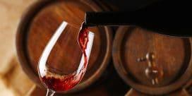 Barbera d'Asti – upplev  Italiens bästa viner
