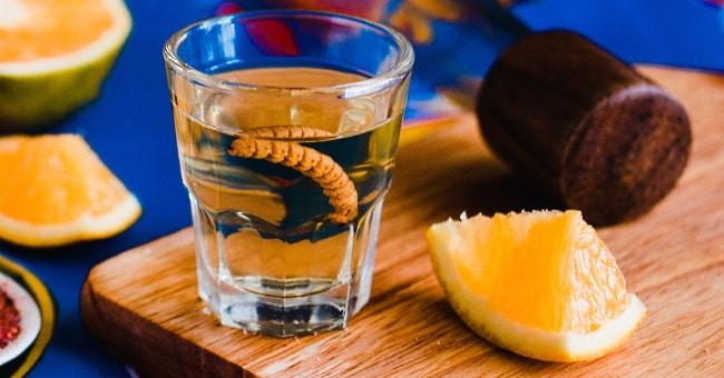 mezcal-i-shotglas-med-larv