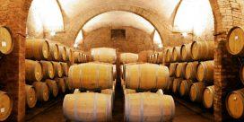 Besök vinregionen Toscana
