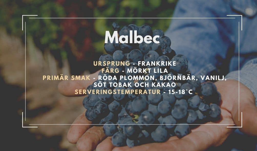 Fakta ruta om Malbec
