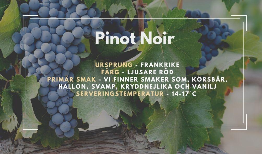 Fakta ruta om Pinot Noir