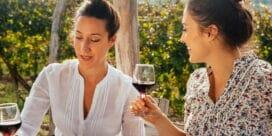 Pinot Noir – upptäck Tysklands eleganta viner!