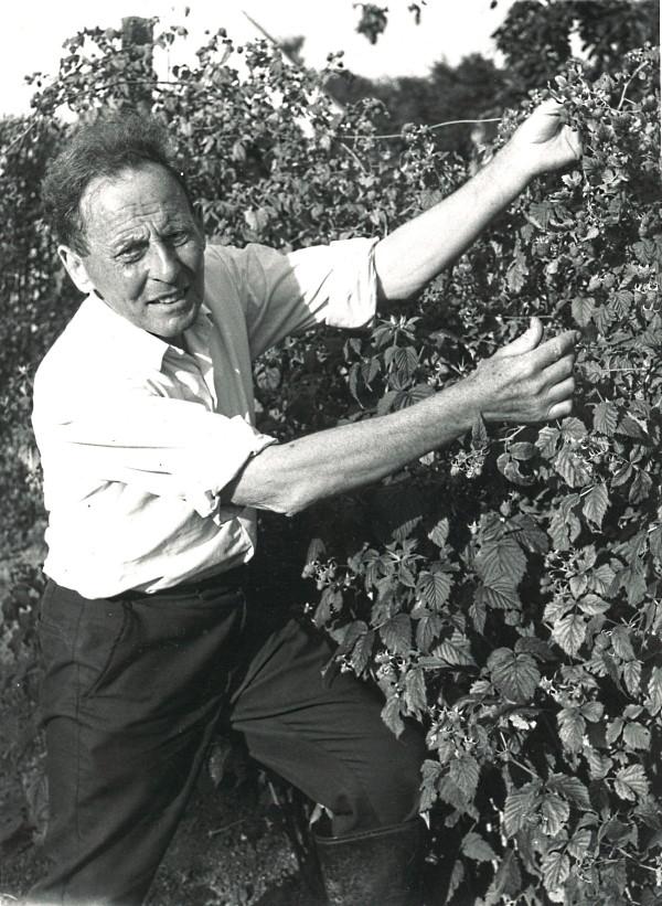 veganska viner - grundare Donald Watson