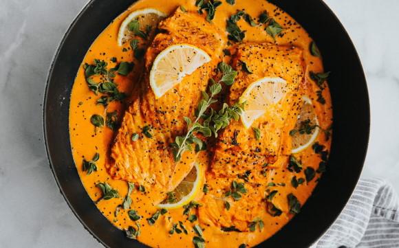 Raza Pet nat - lax i curry och saffran