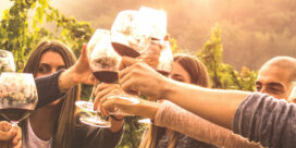 Wineries for Climate Protection – Vinproducenters hållbarhetsaktion
