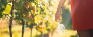 svenskt viner flicka med ett vinglas i vingården