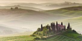 Vingårdar i Chianti